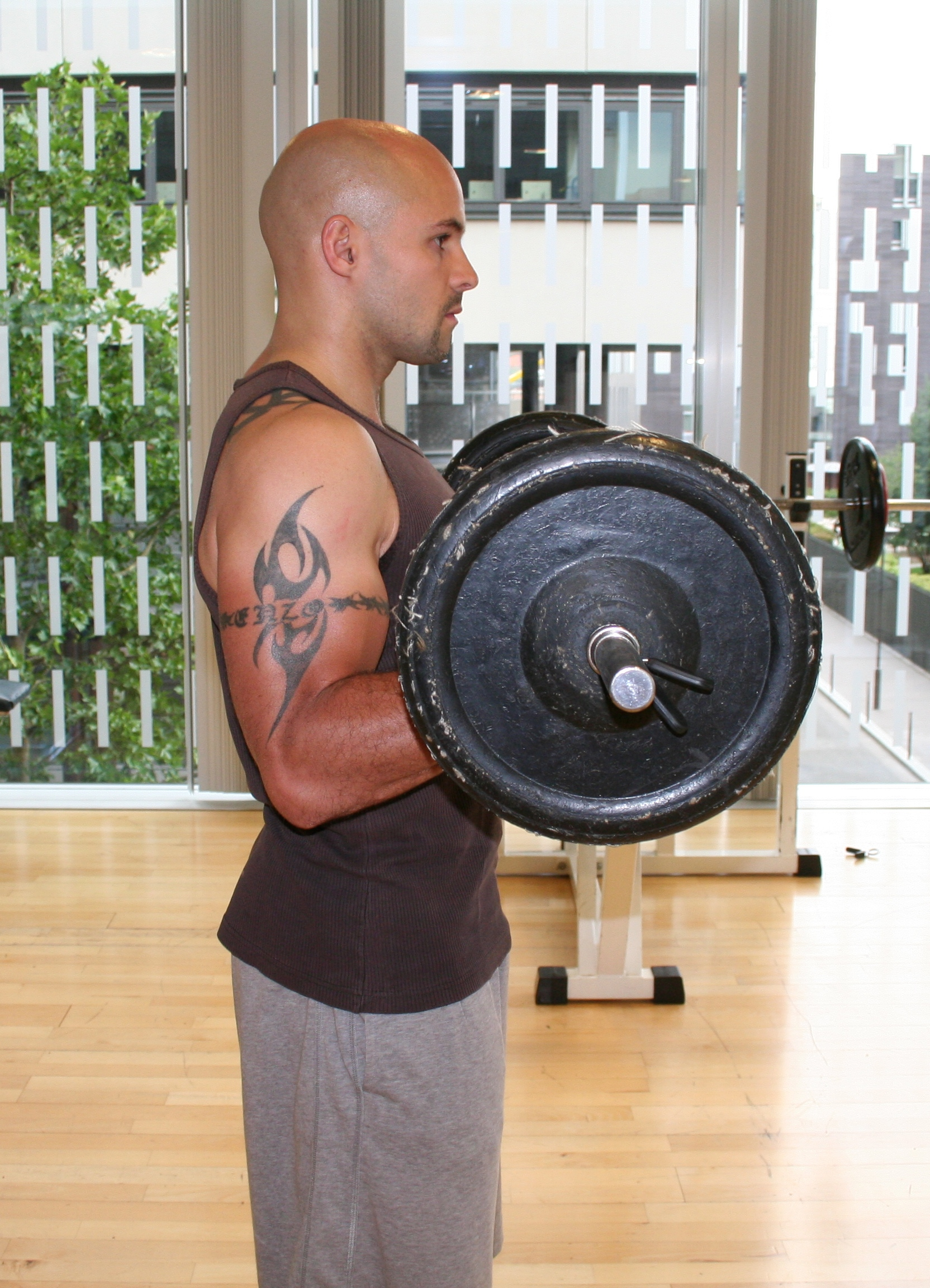 Volume musculaire